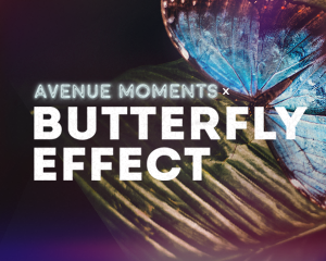AVENUE Moments x Butterfly Effect